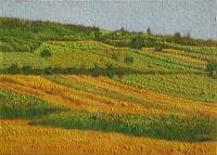 03-njive-kod-manastira-pokajnica-ulje-na-platnu-kasirano-na-kartonu-2012